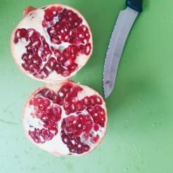 ErdnussFrosch.com Granatapfel